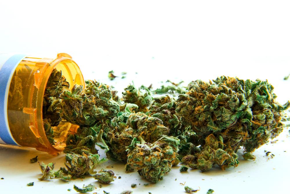 Смесь марихуаны конопля аллергия